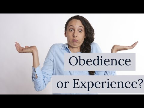 Obedient or Experienced? Kingdom Seekers #111