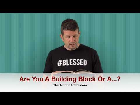 Are You A Building Block Or? Prophetic Revelation – Kingdom Seekers #157