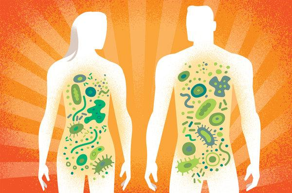 How Can You Keep Your Gut Health – Your Microbiome Healthy?